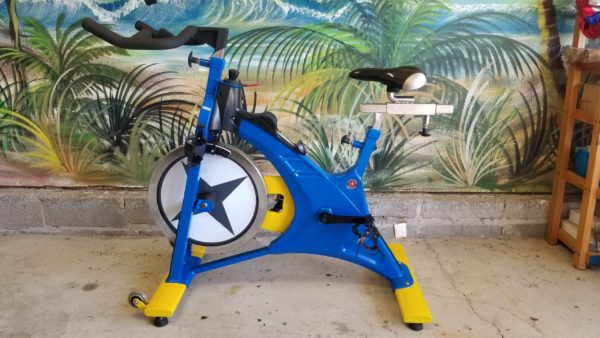 schwinn evolution spin bike